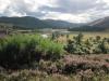 Sgor an Lochain Uaine - Braemar